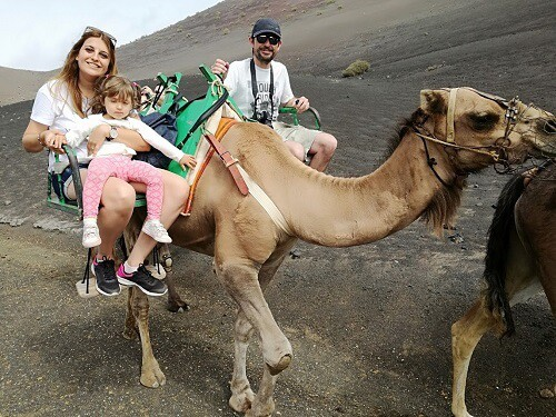 paseo en camellos en Lanzarote