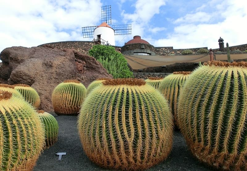 turismo sostenible en Lanzarote